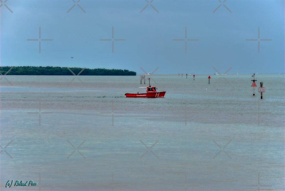 Tow Boat by photorolandi