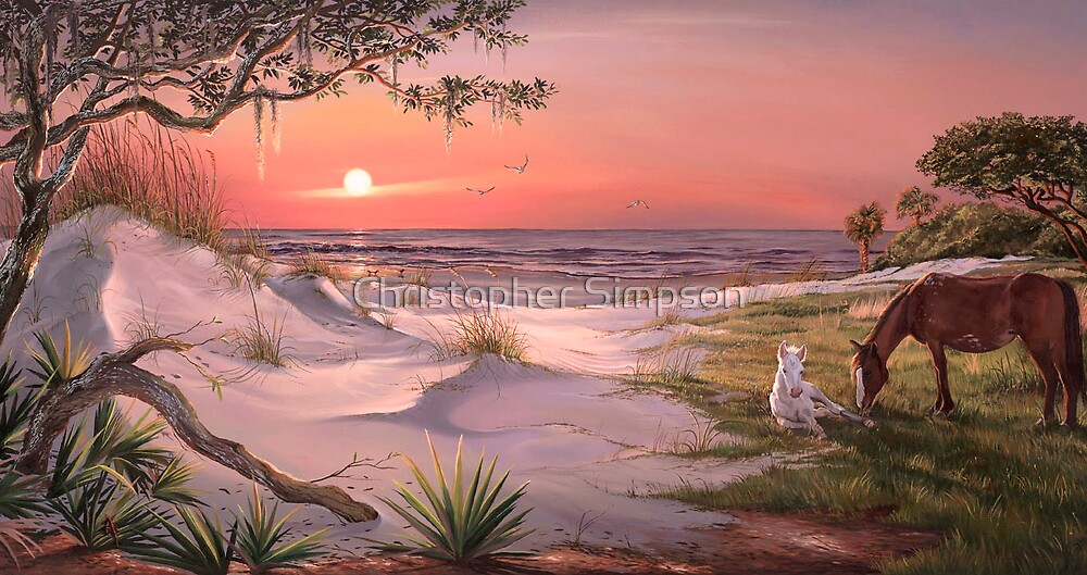 Seaside Journey, Cumberland Island  by Christopher Simpson