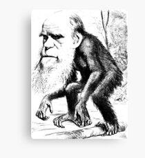 Darwin Canvas Print