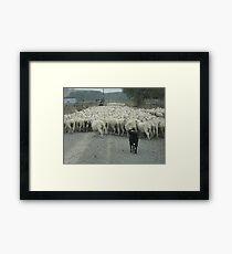 Rush Hour Framed Print