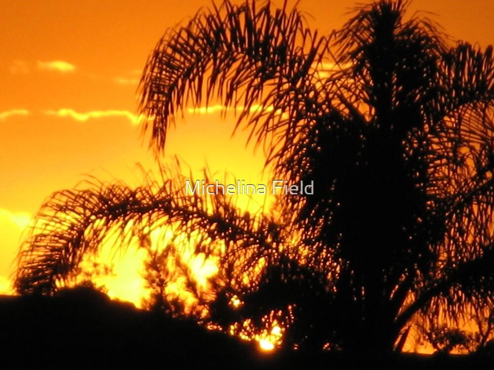sunset by Michelina Field