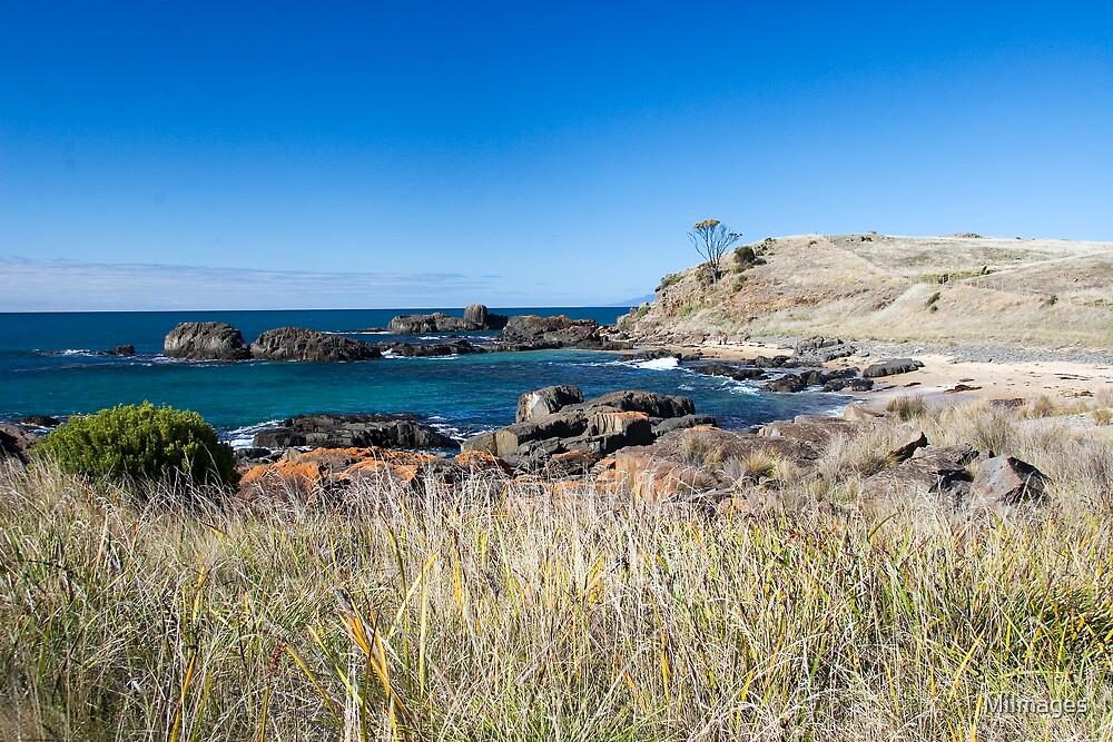 Swansea Tasmania  by MiImages