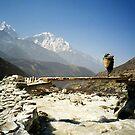 Sherpa on Everest Trail Nepal by Caren della Cioppa