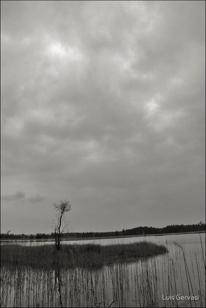 Alone by Luis Gervasi