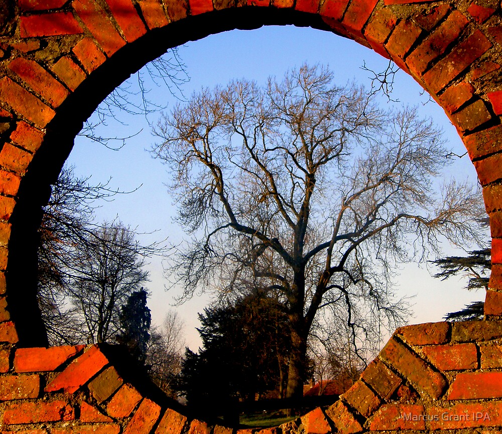 Through the round window 2 by Marcus Grant IPA