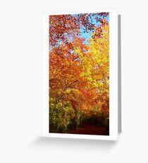 Autumn Passage  Greeting Card