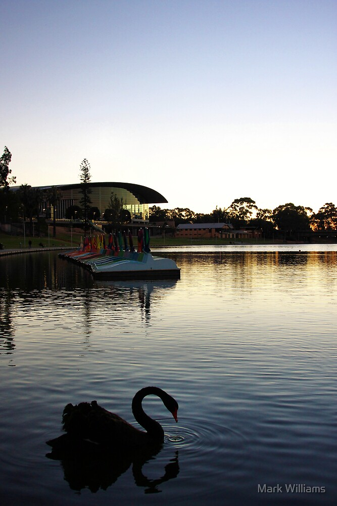The Torrens by Mark Williams