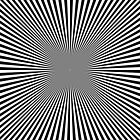 Optical Illusion by Anjali Devjani