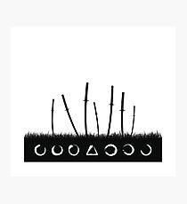 Sieben Samurai Fotodruck
