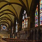Cathedral of Freiburg - Germany by Arie Koene