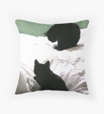Wash and Brush Time Throw Pillow