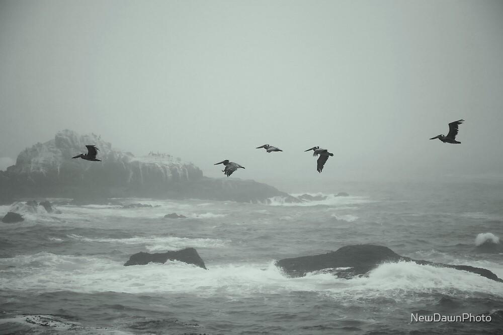 Prehistoric coast by NewDawnPhoto