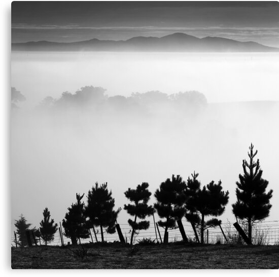 007 Fog in the valley - Ceres by Hans Kawitzki