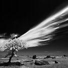 011 Speeding cloud - Infrared by Hans Kawitzki