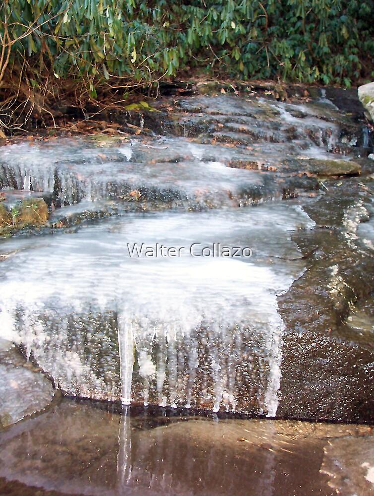 Frozen Creek by Walter Collazo
