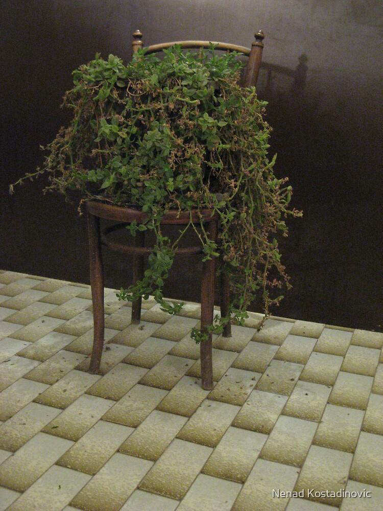 Old chair by Nenad Kostadinovic