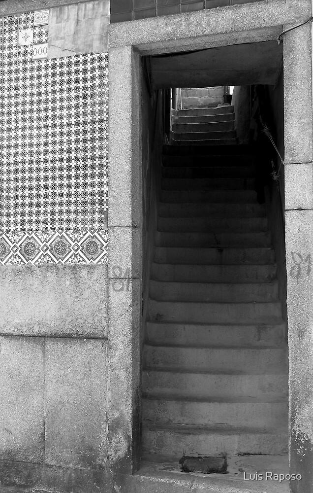 Porta 81 by Luis Raposo