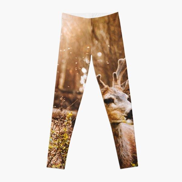 a deer in the yosemite national park Leggings