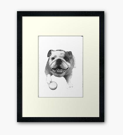 Constance Framed Print