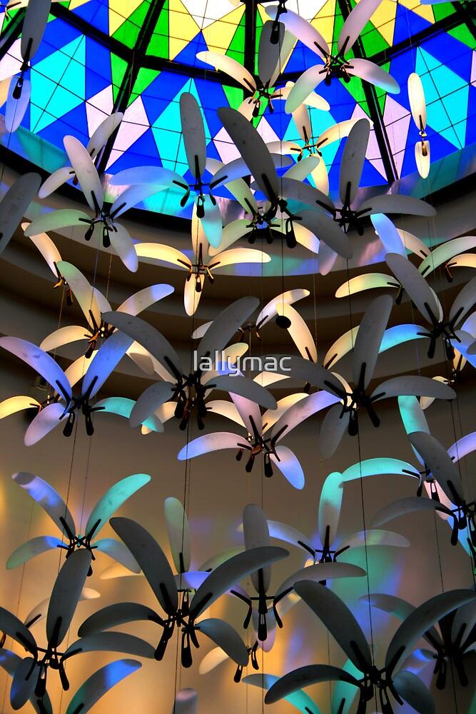 Rainbow Swarm by lallymac
