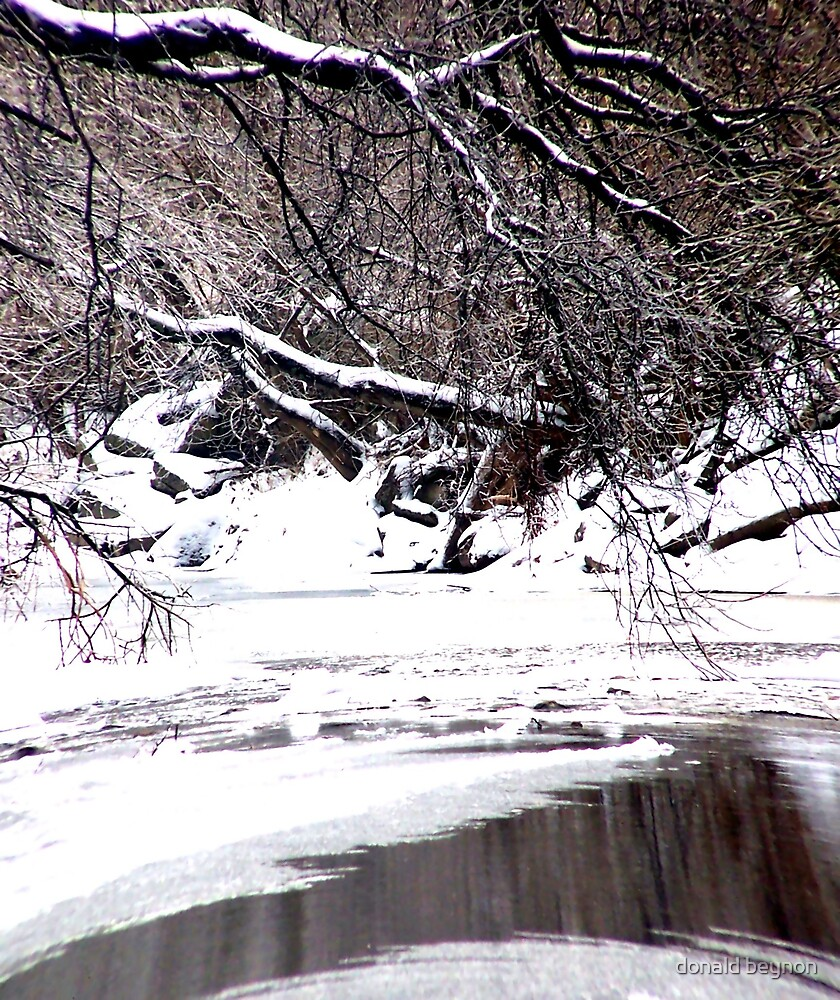creek by donald beynon
