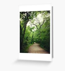 Forest Highway Greeting Card