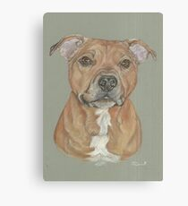 Terrier portrait in pastel Canvas Print