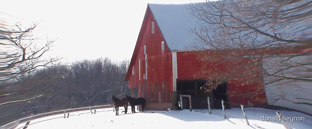 horse by donald beynon