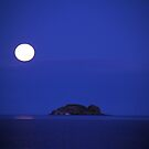 Moon Over Visscher Island by Asoka