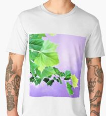 Sycamore Tree Leaves Over Water  Men's Premium T-Shirt