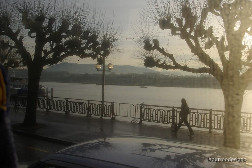 winter in Geneva by ladytreedesigns