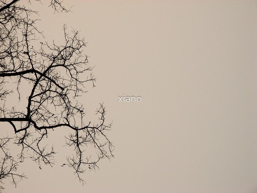 Beijing winter by xiano