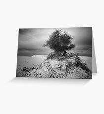 027 Clinging to life - Mono Greeting Card