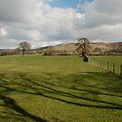 A Farndale landscape by dougie1