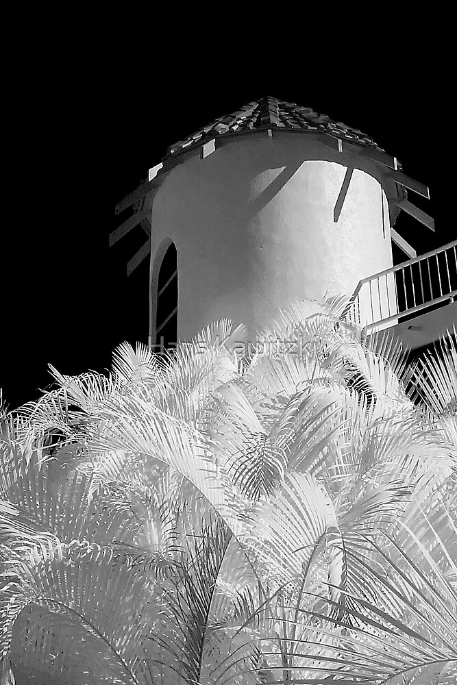 022 The Tower - Infrared by Hans Kawitzki