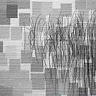 Reeds21 by Tom  Reynen
