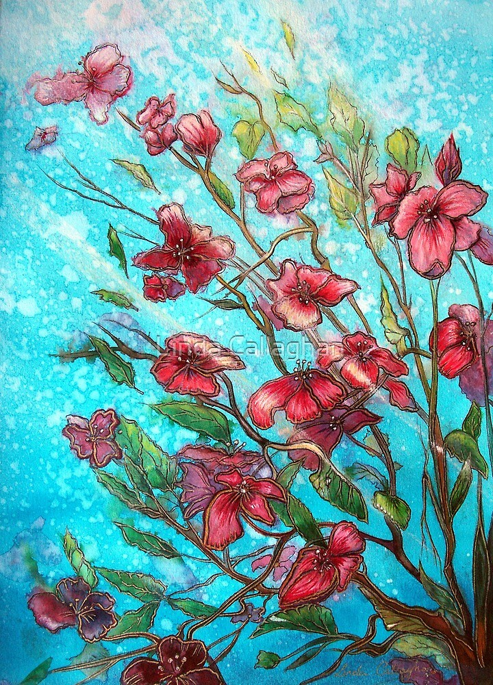 Cherry Blossom Flowers  by Linda Callaghan
