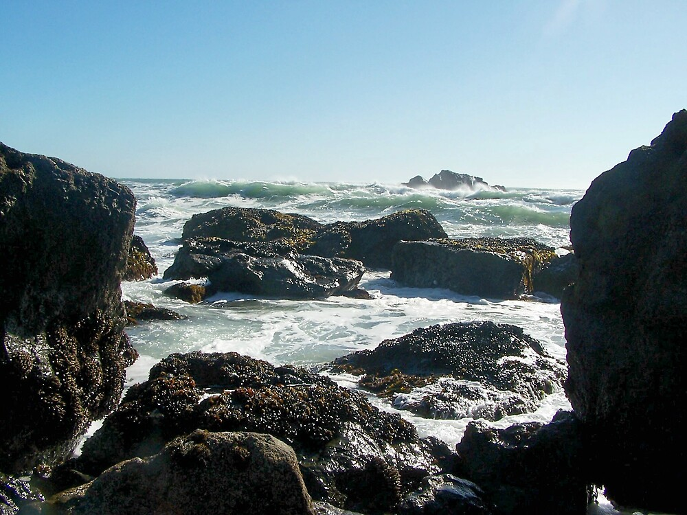 Rocks and Sea by Carrie Norberg
