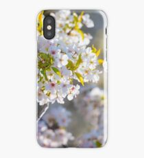 Japanese Blossoms iPhone Case/Skin