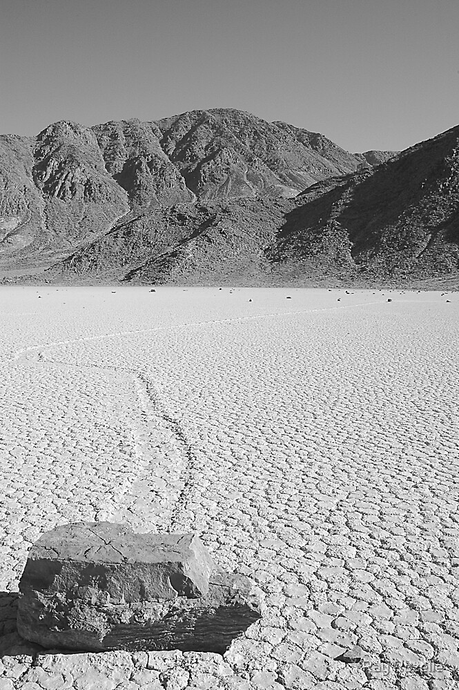 Death Valley / Racetract by Ray Rozelle