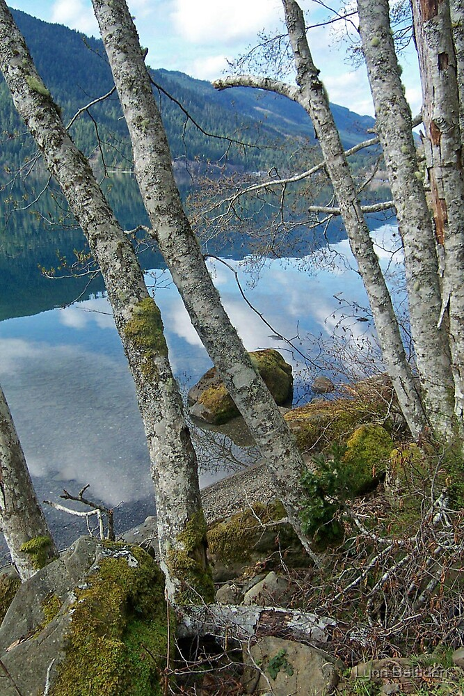 """Lake Crescent Reflection"" by Lynn Bawden"