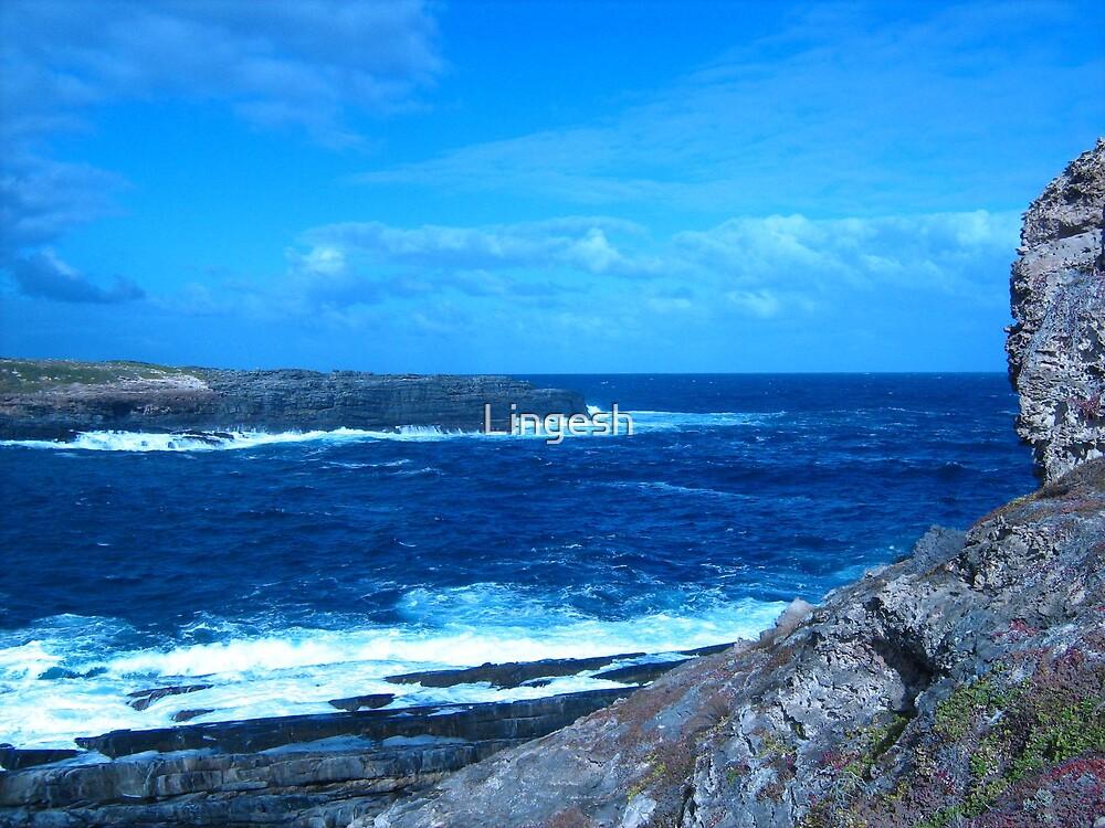 Blue Sea by Lingesh