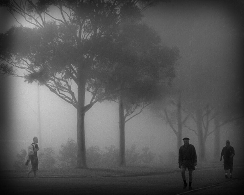 Mist Walkers by Maggiebee