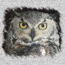 Owl be damned - Tee by Darlene Ruhs