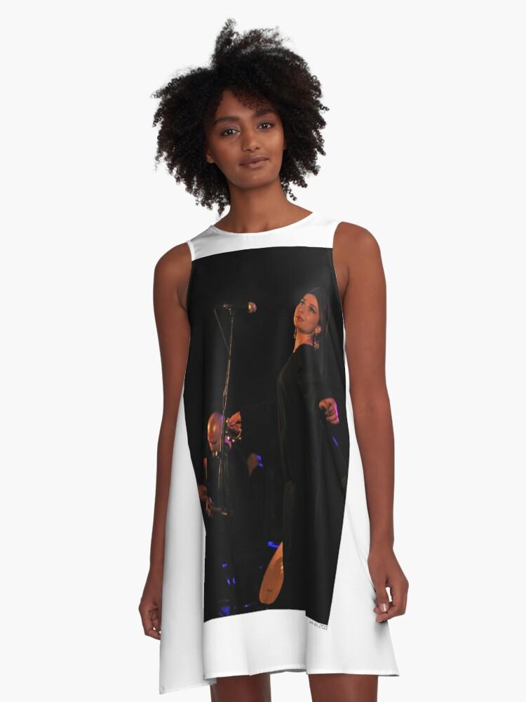 Irfan A-Line Dress Front