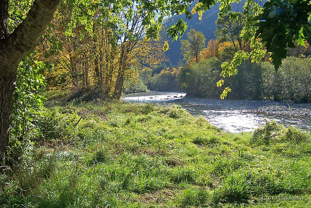 Spring in the Elwha Valley by Lynn Bawden