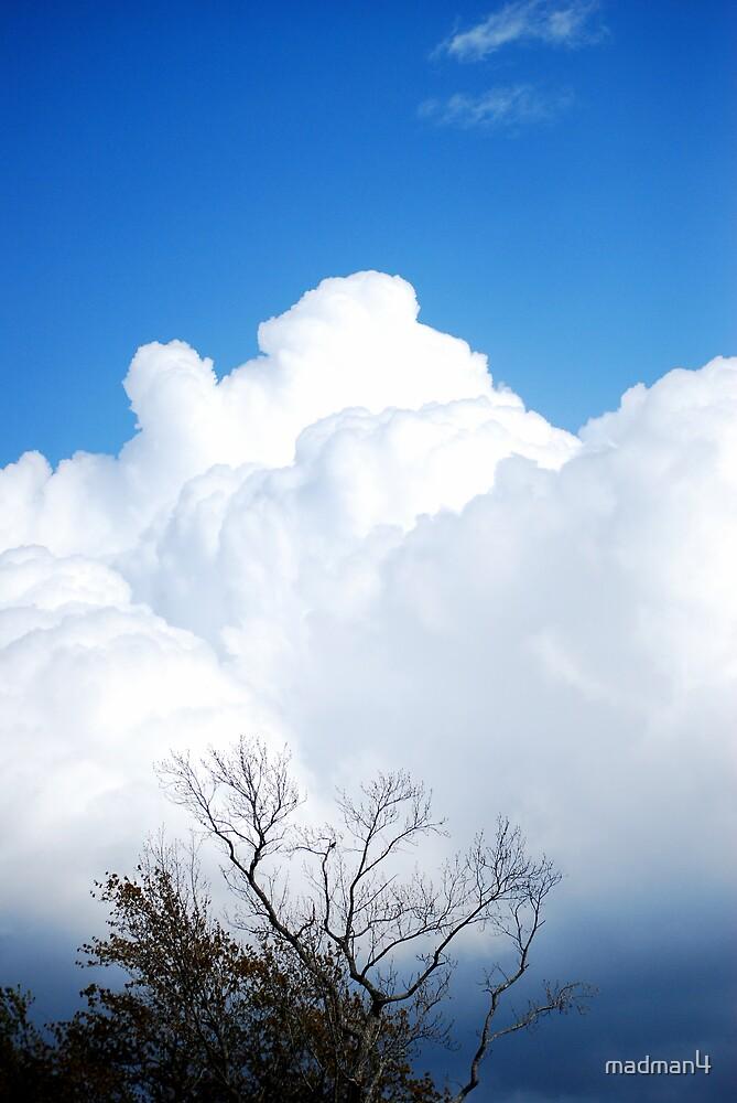 April Sky by madman4