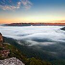 Misty Morn by Andrew Bosman