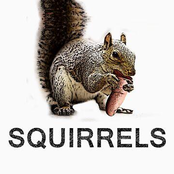 Squirrels by k1ll4k4m