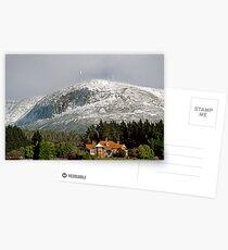 Mt Wellington snow beauty Postcards